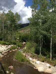 Trail in Snowmass Colorado