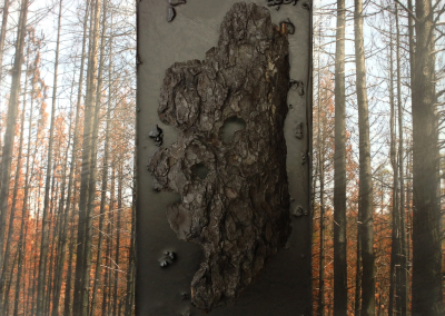 Sisters, Oregon Pole Creek Fire mixed media encaustic sculpture