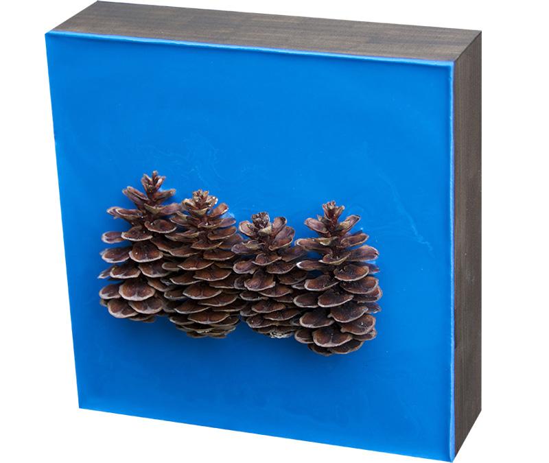 Lisa Marie Sipe, encaustic and pine cones on wood panel