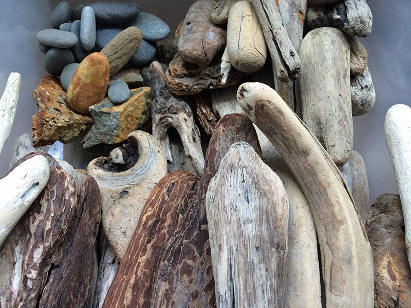 Box of driftwood in Lisa Marie Sipe's studio