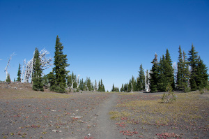 3 Sisters Wilderness, Oregon