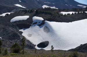 Polar Bear on side of mountain