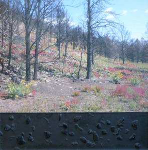 wildfire burned forest mixed media sculpture
