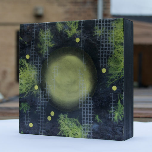 Lichen & Spheres encaustic collage by Lisa Marie Sipe