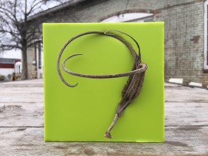 Devil's Claw in Green, encaustic art by Lisa Marie Sipe