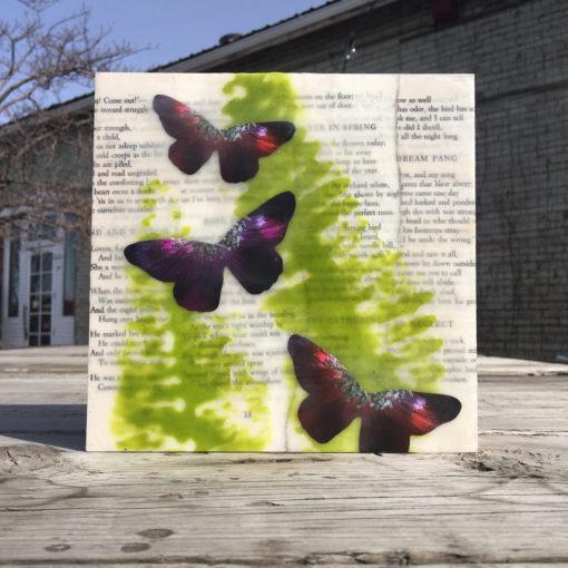Spring Dream, encaustic, ferns, butterflies, Robert Frost poems, Lisa Marie Sipe