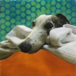 Encaustic Painting Pet Collage Workshop with Lisa Marie Sipe in Bend, Oregon